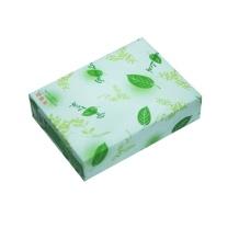 绿叶 复印纸 A5 80g  500张/包 20包/箱