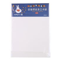 晨光 M&G 皮纹纸 FPYNZS21 A4 (白色) 10张/包