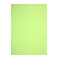 晨光 M&G 彩色卡纸 APYNZ475 A4 230g (浅绿) 10张/盒