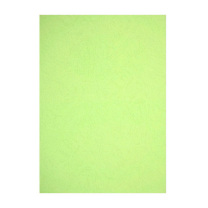 晨光 M&G 浅绿 A4 230g 卡纸 APYNZ475  10张/盒