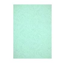 晨光 M&G 彩色卡纸 APYNZ473 A4 230g (浅蓝) 10张/盒