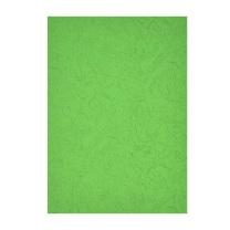 晨光 M&G 深绿 A4 230g 卡纸 APYNZ471  10张/盒