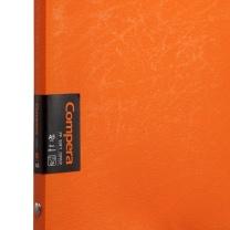 齐心 Comix 20孔PP活页夹 C7005 A5 50张 (橙色)