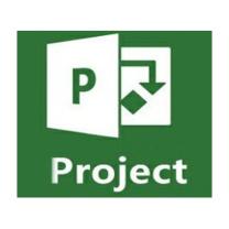 微软 Microsoft Project 2019 Standard 标准版