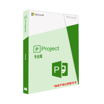 微软 Microsoft Project 2019 Professional 专业版