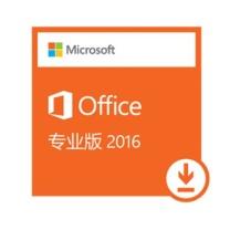 微软 Microsoft 办公软件 OFFICE  政企版