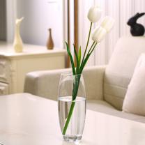 Bluelans 玻璃瓶花瓶 圆形 高26CM