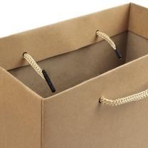 国产 竖式牛皮纸袋 小号 20*25*8cm  10个/包 40包/箱 (棉绳黄浆)(外箱尺寸500*300*500mm)(新老包装交替以实物为准)