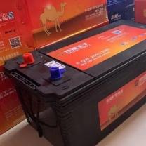 沙漠王子 免维护蓄电池 6-QW-200 (黑色)