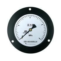 大成仪表 压力表 Y-100ZT*1MPa*1.6级