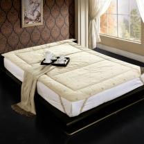 博洋 BOYONG 可折叠榻榻米床褥子 120*200cm (白色)