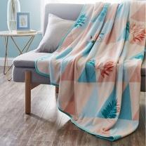 罗莱 LUOLAI 拾光趣语 拾光趣语珊瑚绒毯 Q1394 180*200cm (蓝粉色) 夏季毯子单双人空调毯