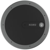 科大讯飞 iFLY TEK 声源定位专业高清降噪录音笔 M1 (黑色)