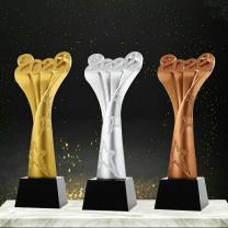 奖杯 国产定制 水晶  仅供南通市