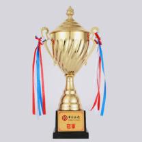 英友 (ENYOU)奖杯 定制 盖形中号