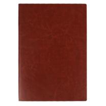 优必利 皮面笔记本记事本 建党100周年纪念品 可定制LOGO B5(单位:本)