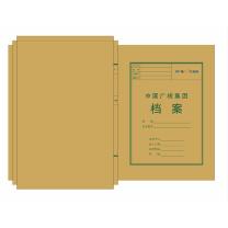 国产定制档案盒 无 背宽10cm 240*340*100mm  (新能源专用)