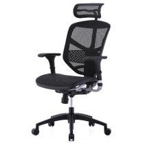 保友 Ergonor电脑椅 联友人体工学椅 金卓高配版Enjoy办公椅子 可躺网椅  DC